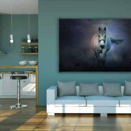 Bijeli konj