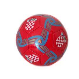 Nogometna lopta 1