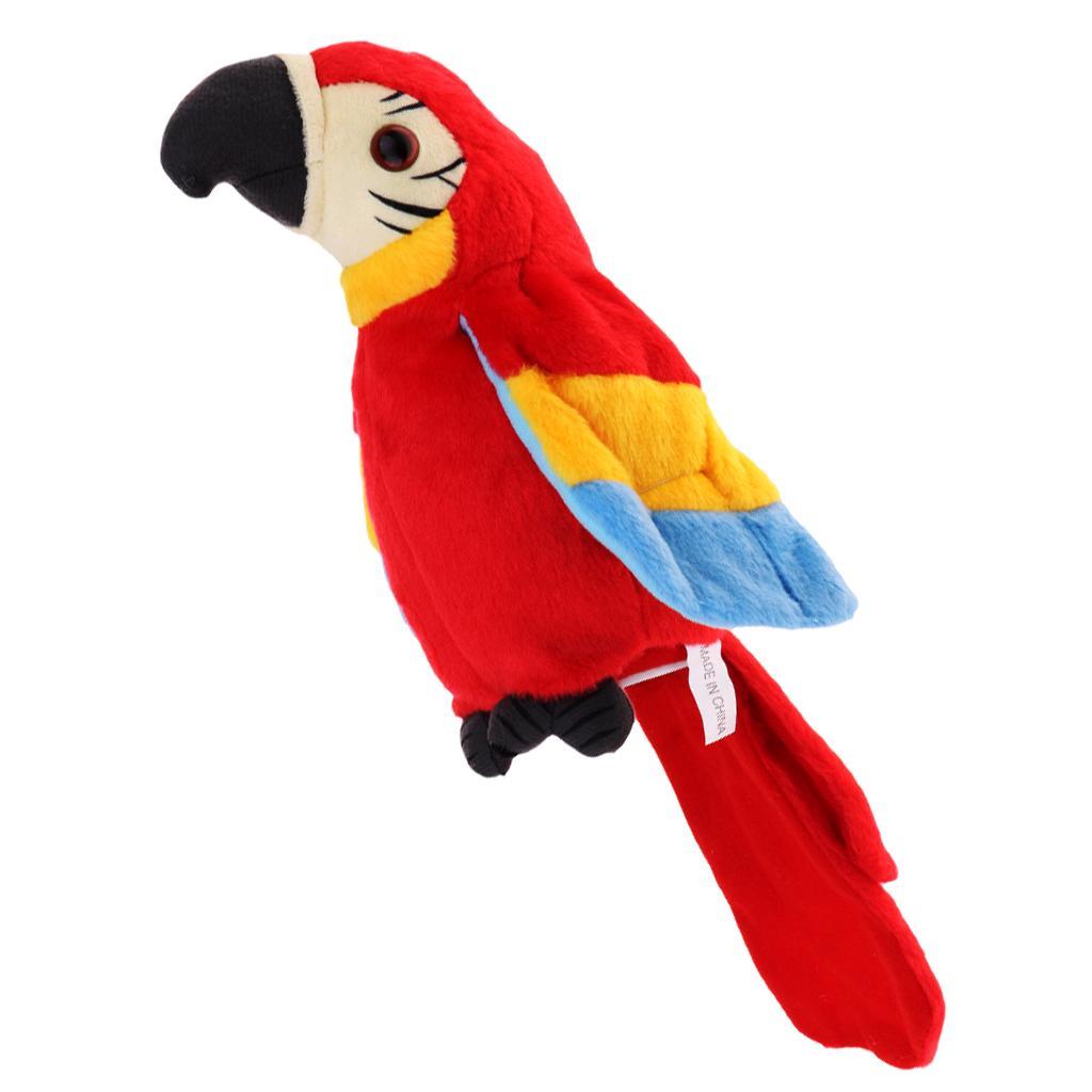 Papiga koja ponavlja Luma shop